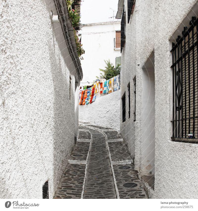 Streets of Andalusia [III] Ferien & Urlaub & Reisen Tourismus Frigiliana weißes Dorf Andalusien Spanien Fischerdorf Haus Mauer Wand Wege & Pfade Gasse Teppich
