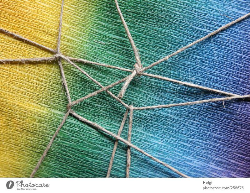 Verknüpfung... blau grün schön gelb grau Kunst Design liegen ästhetisch Geschenk außergewöhnlich Dekoration & Verzierung Papier Sicherheit Netzwerk einzigartig