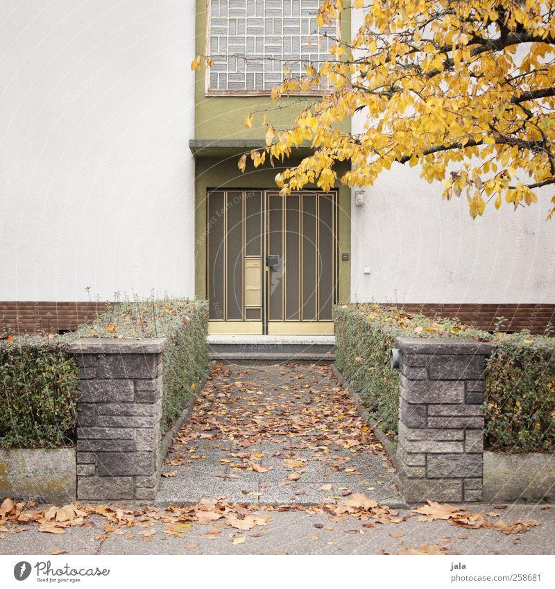 hier haust hermann herbst Stadt Baum Pflanze Haus Herbst Architektur Garten Gebäude Tür Fassade trist Sträucher Bauwerk Einfamilienhaus