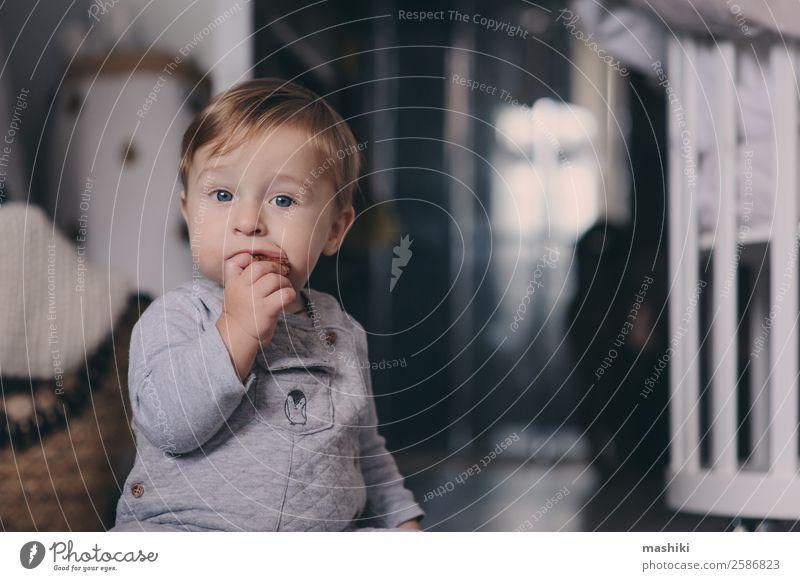 süßes glückliches Baby Junge isst Kekse zu Hause Teller Lifestyle Stil Glück Spielen Winter Schlafzimmer Kind Kindheit Wärme Pullover sitzen klein modern