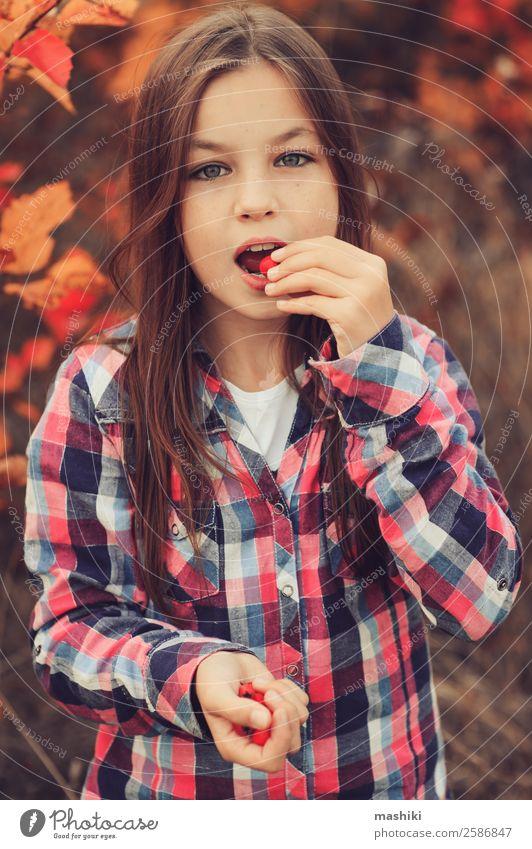 glückliches Kind Mädchen isst Beeren Freude schön Erholung Spielen Ferien & Urlaub & Reisen Sommer Frau Erwachsene Kindheit Natur Herbst Wald Hemd Lächeln