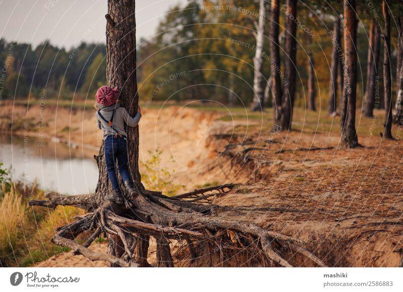 Kind klettert auf Tanne auf Herbstspaziergang Lifestyle Ferien & Urlaub & Reisen Ausflug Abenteuer Mädchen 3-8 Jahre Kindheit Natur Sand Wasser Schönes Wetter