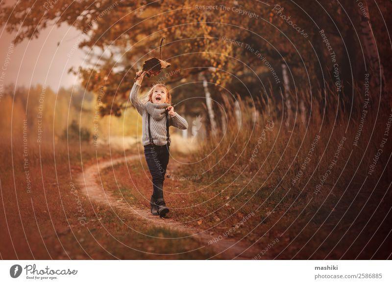 glückliches Kind Mädchen geht im Herbst spazieren Mensch Natur Baum Park Wald Lächeln laufen Abenteuer Kindheit Freude Jahreszeiten Spielen lustig Glück