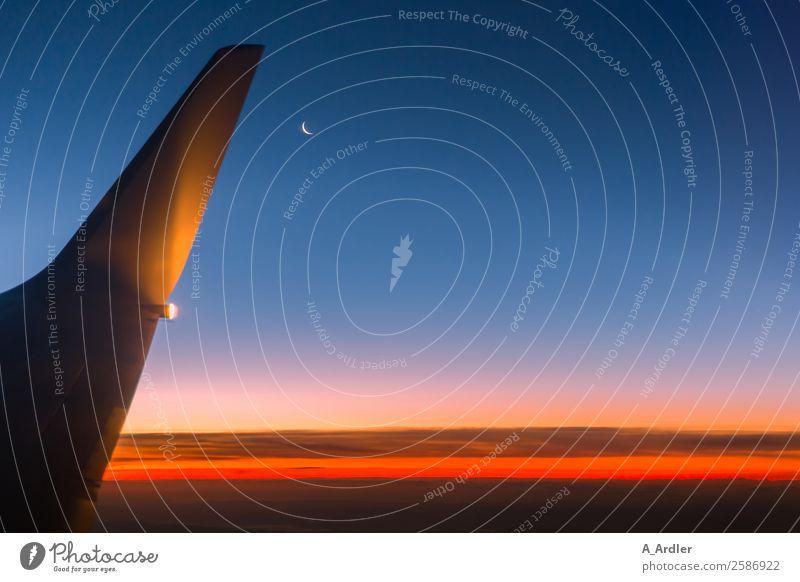 luftig | über den Wolken Ferien & Urlaub & Reisen Tourismus Ferne Freiheit Pilot Business Natur Himmel Wolkenloser Himmel Nachthimmel Horizont Sonnenlicht Mond