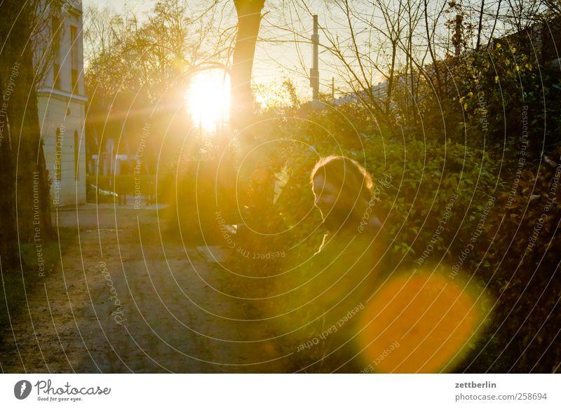 Sonne Freizeit & Hobby Ausflug Abenteuer Garten Frau Erwachsene Kopf 1 Mensch Umwelt Natur Landschaft Herbst Winter Klima Klimawandel Wetter Schönes Wetter Park