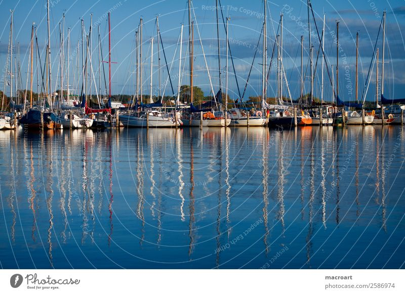 Segelboote an der Ostsee Segeln Wasserfahrzeug Motorboot ankern Anlegestelle Rerik Steg Hafen botssteg salzhaff See Gewässer Blauer Himmel
