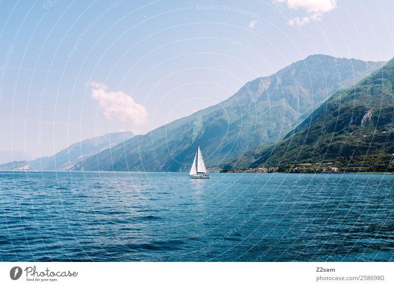 Gardasee | Segelschiff Umwelt Natur Landschaft Sommer Schönes Wetter Berge u. Gebirge Seeufer Segelboot elegant nachhaltig natürlich blau grün erleben Farbe
