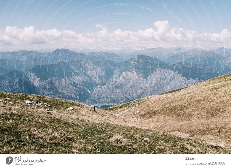 Monte Baldo | Gardasee Umwelt Natur Landschaft Sommer Schönes Wetter Wiese Alpen Berge u. Gebirge Gipfel einfach Ferne gigantisch Unendlichkeit blau Abenteuer