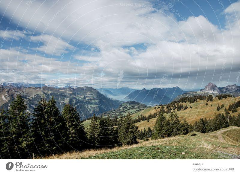 Aussicht vom Hoch-Ybrig Umwelt Natur Landschaft Sommer Schönes Wetter Alpen Berge u. Gebirge natürlich blau grün Tourismus Schweiz Vierwaldstätter See