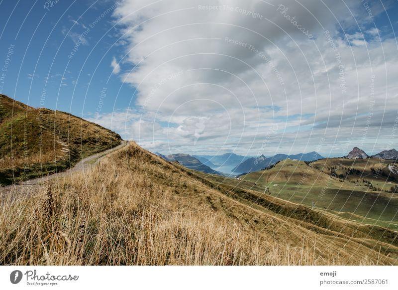 Aussicht von Hoch-Ybrig Umwelt Natur Landschaft Sommer Schönes Wetter Alpen Berge u. Gebirge natürlich blau grün Tourismus Schweiz Vierwaldstätter See
