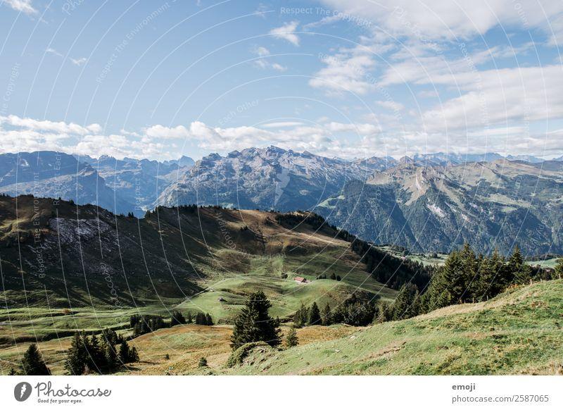 Berge Umwelt Natur Landschaft Sommer Schönes Wetter Alpen Berge u. Gebirge natürlich blau grün Tourismus Schweiz Hoch-Ybrig Wanderausflug Farbfoto mehrfarbig
