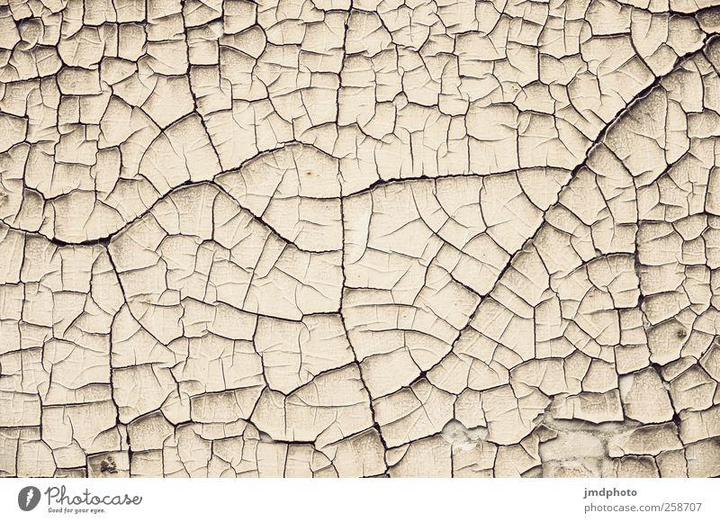 dürre Natur Umwelt Landschaft Erde Boden trist Wüste trocken Riss vertrocknet Klimawandel Dürre Ödland gerissen dehydrieren Einstellungen