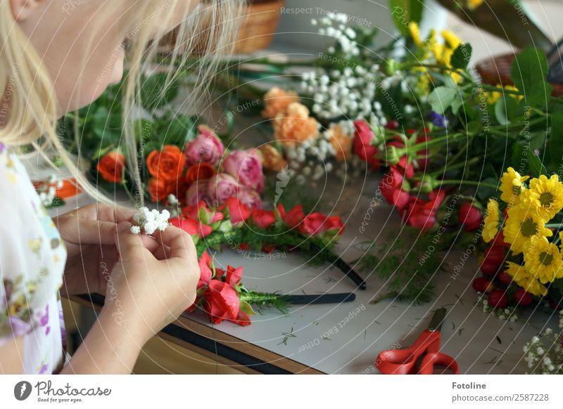 Blumenkranzbastelei Mensch feminin Kind Mädchen Kindheit Haut Kopf Haare & Frisuren Gesicht Arme Hand Finger Sommer Pflanze Rose Blüte frisch natürlich