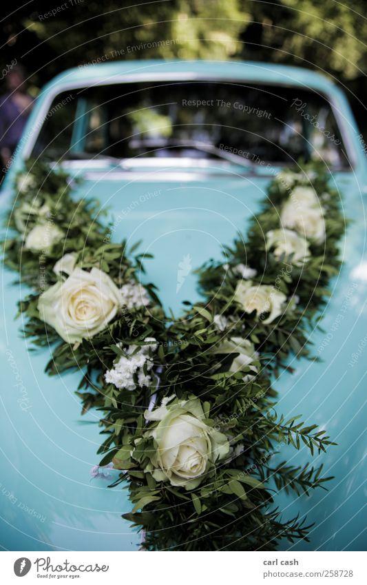 wedding car Lifestyle elegant ästhetisch positiv Wärme blau grün Hochzeit PKW Oldtimer Blumenkranz Rose Detailaufnahme Farbfoto mehrfarbig Außenaufnahme