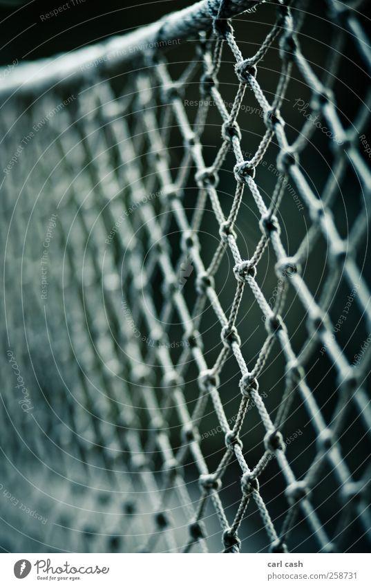 Netz Zoo Linie Knoten Zusammenhalt Geländer Unschärfe Seil Schutz Farbfoto Außenaufnahme Nahaufnahme Detailaufnahme Experiment Strukturen & Formen Menschenleer