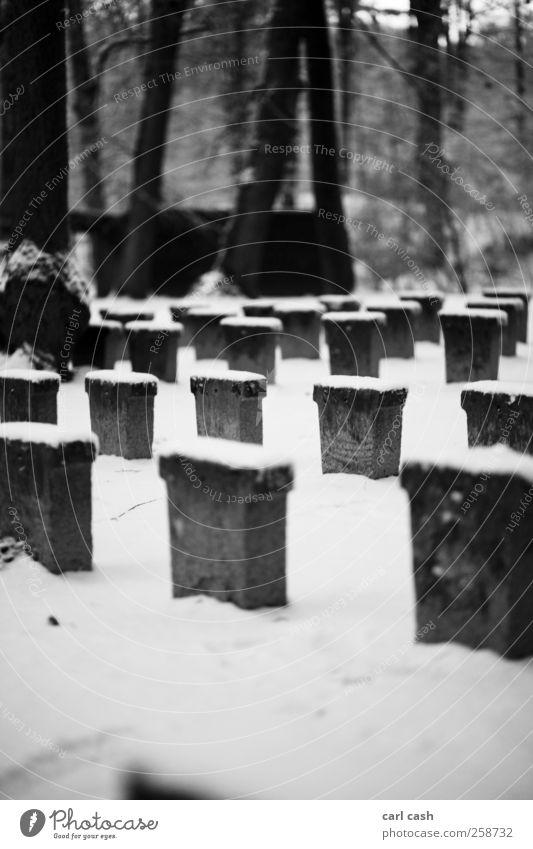 kalter winter weiß Einsamkeit ruhig schwarz Traurigkeit Schnee Tod grau Stein Frieden Stress Endzeitstimmung trösten Beerdigung Grabstein Friedhof
