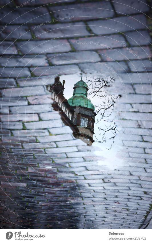Nach dem Sturm Häusliches Leben Wohnung Haus Dachboden Umwelt Natur Wasser Herbst Winter Regen Pflanze Baum Straße Stein Backstein nass Reflexion & Spiegelung
