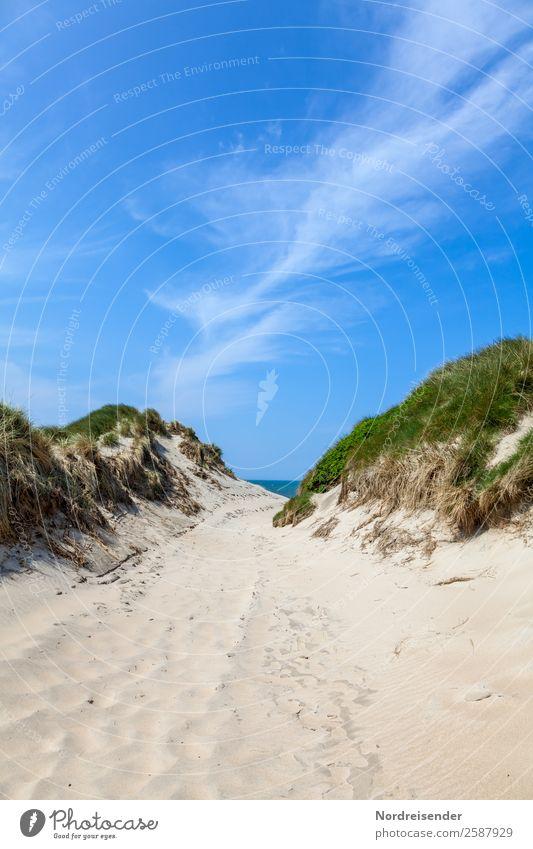Weg zwischen den Dünen Ferien & Urlaub & Reisen Tourismus Camping Sommer Sommerurlaub Sonne Strand Meer Natur Landschaft Wasser Himmel Wolken Schönes Wetter