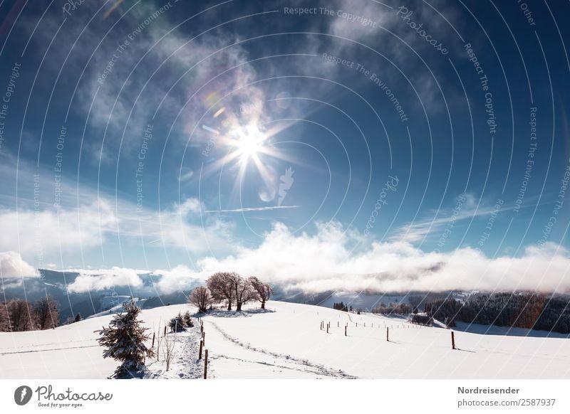 Winterfreuden Ferien & Urlaub & Reisen Tourismus Schnee Winterurlaub Berge u. Gebirge Wintersport Natur Landschaft Urelemente Himmel Wolken Sonne Sonnenlicht