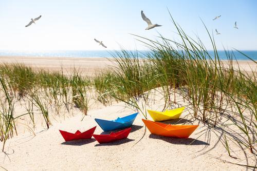 Sommer Ferien & Urlaub & Reisen Tourismus Camping Sommerurlaub Sonne Strand Meer Natur Landschaft Wasser Wolkenloser Himmel Schönes Wetter Gras Nordsee Ostsee
