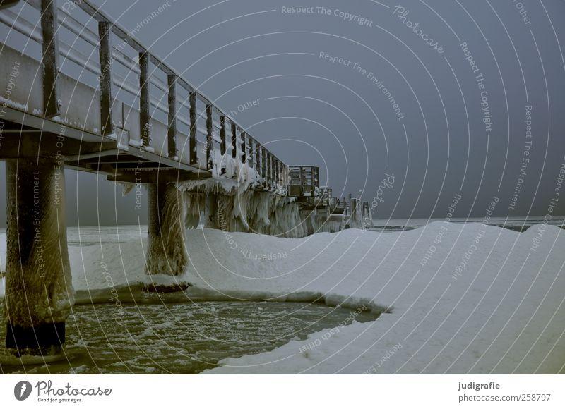 Winter Umwelt Natur Landschaft Himmel Klima Eis Frost Schnee Küste Ostsee Darß Wustrow Bauwerk Brücke kalt Stimmung Farbfoto Gedeckte Farben Außenaufnahme