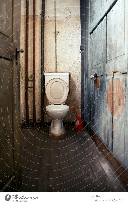 ein Thron fürs Volk! alt Erholung kalt Wand Architektur Holz Gebäude Mauer Tür ästhetisch Fabrik Idylle gruselig Toilette Hütte