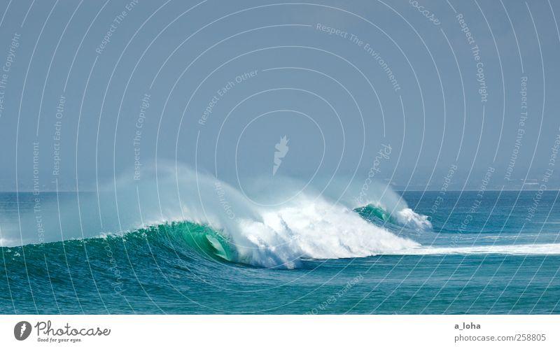 the power of the ocean 2 Umwelt Natur Urelemente Wasser Wolkenloser Himmel Sommer Schönes Wetter Wellen Küste Meer Bewegung Einsamkeit Ferne Gischt grün blau