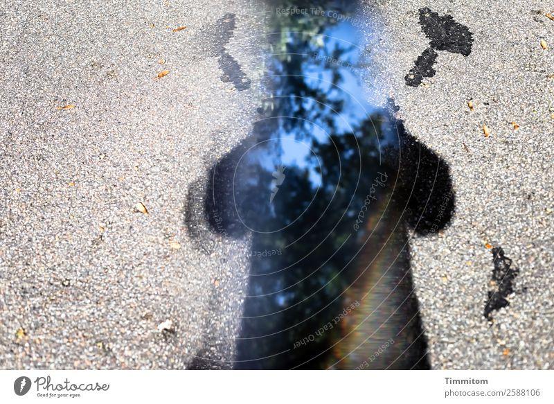 Grenzüberschreitung | ...kurz danach... blau Baum schwarz Straße Wege & Pfade Gefühle grau Zeichen Irritation Tapferkeit