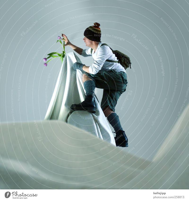 3800_meter über dem meer Lifestyle Freizeit & Hobby Sport wandern Mensch maskulin Mann Erwachsene Körper 1 30-45 Jahre Umwelt Pflanze Blume Tulpe Felsen Alpen