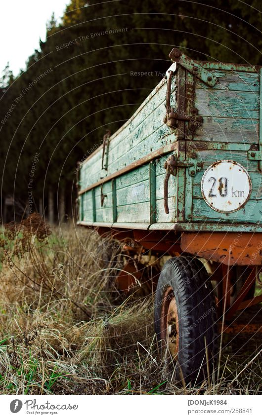 Natur alt grün rot Wald Umwelt Gras Güterverkehr & Logistik Gelassenheit Fahrzeug Anhänger Verkehrszeichen