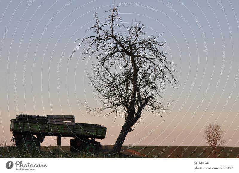 Wagen Baum Winter Himmel Landwirtschaft Forstwirtschaft Feierabend Horizont Feld ästhetisch blau rosa schwarz Stimmung Gelassenheit ruhig Erholung Anhänger
