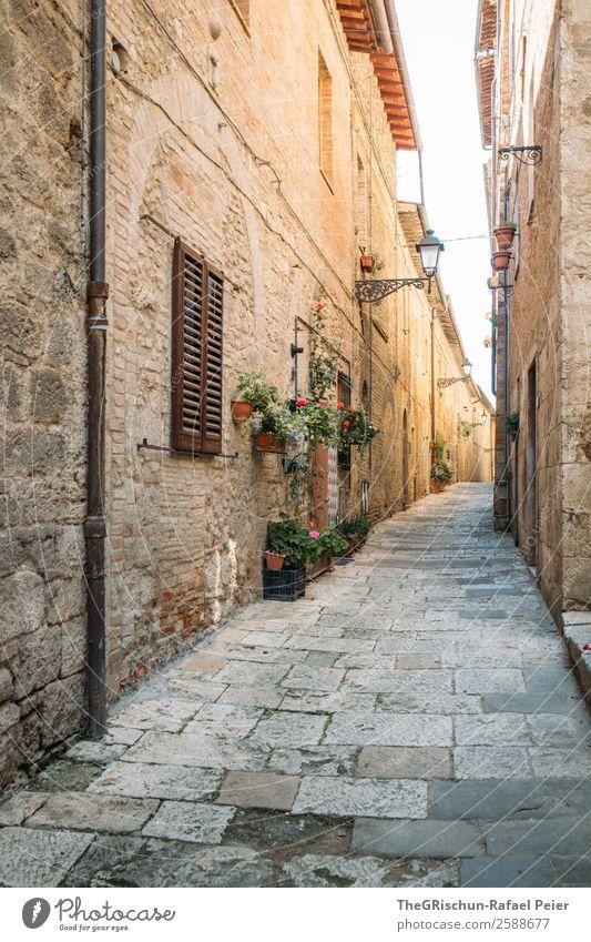 Gasse Dorf alt Italien Toskana Reisefotografie eng Licht Schatten Ferien & Urlaub & Reisen entdecken Mauer Steinboden Farbfoto Außenaufnahme Menschenleer