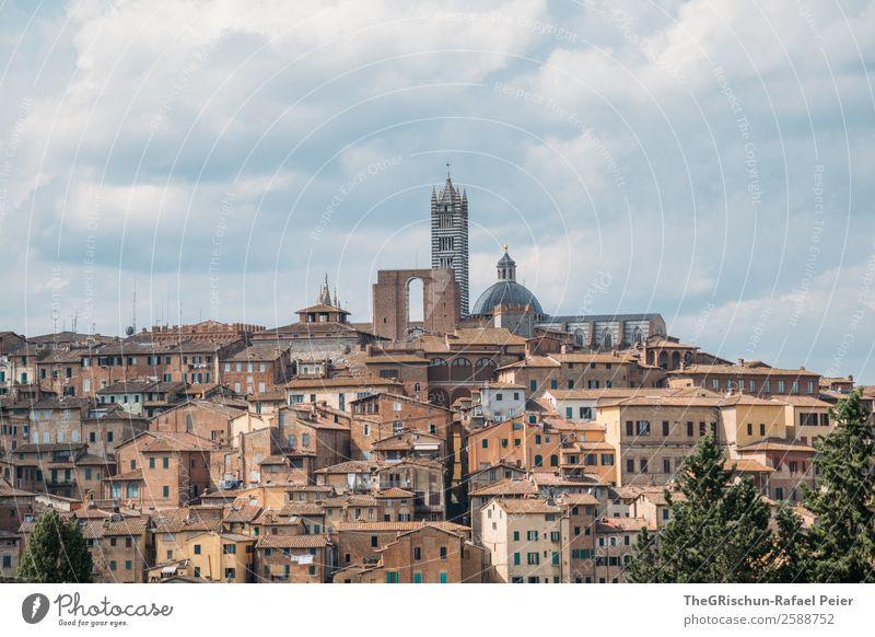 Siena Stadt ästhetisch Italien Reisefotografie Kleinstadt Toskana entdecken Haus geschlossen bebauen Farbfoto Außenaufnahme Menschenleer Tag Weitwinkel