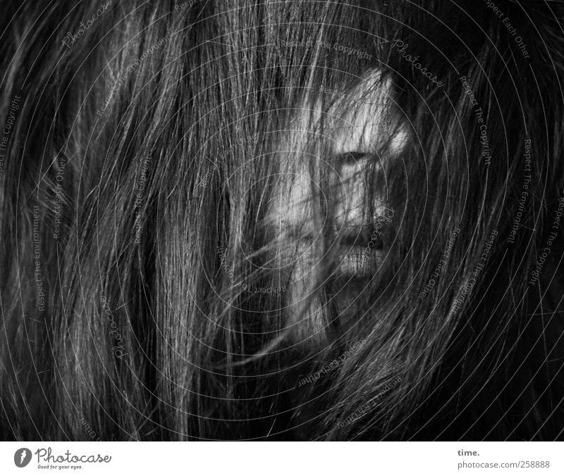 In Every Dream Home A Heartache Mensch feminin Kopf Haare & Frisuren Nase Mund Lippen 1 18-30 Jahre Jugendliche Erwachsene Gefühle geheimnisvoll komplex Scham