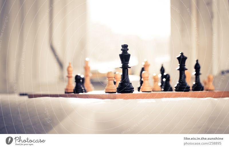 der könig unter den spielen weiß schwarz Erholung Spielen Denken Freundschaft Zeit Zufriedenheit Zusammensein Freizeit & Hobby Tisch planen Schönes Wetter Langeweile König Weisheit