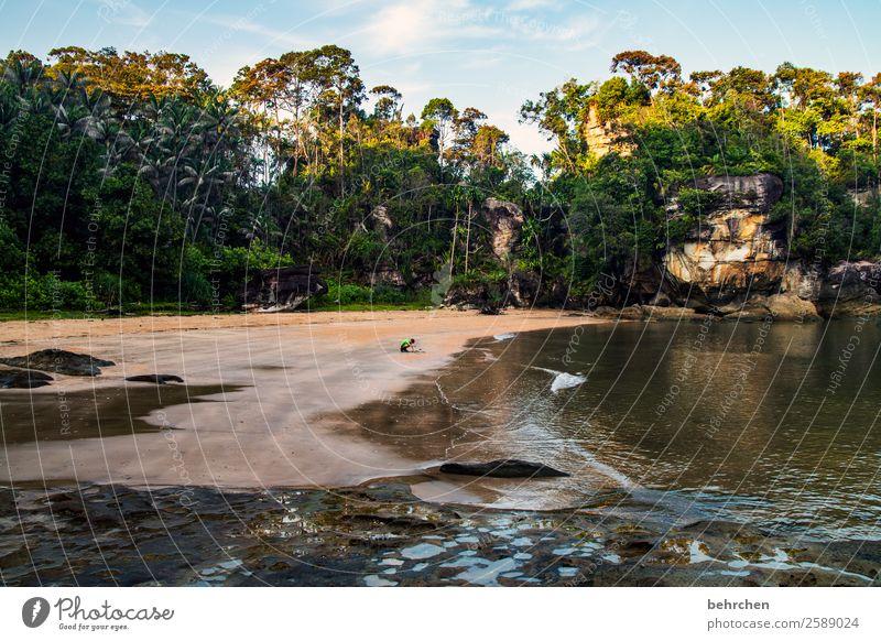 ein strand für sich allein Natur Ferien & Urlaub & Reisen schön Landschaft Baum Meer Einsamkeit Ferne Strand Küste Junge Tourismus Spielen außergewöhnlich