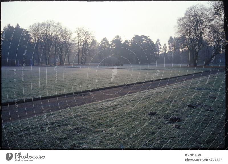 Weg, gerade Natur alt Stadt Baum Einsamkeit Erholung Landschaft dunkel Wiese Herbst Wege & Pfade Garten Kunst Park Stimmung Freizeit & Hobby