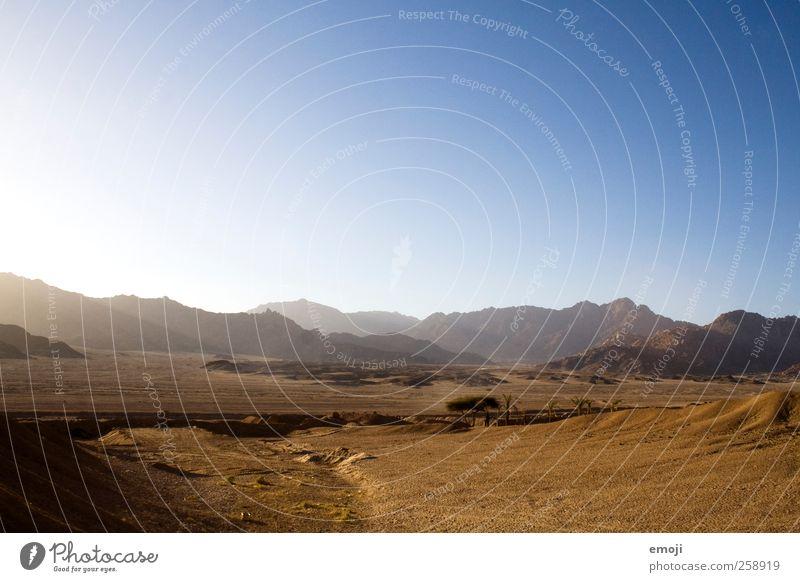 Wüste Umwelt Natur Landschaft Urelemente Erde Himmel Wolkenloser Himmel Sonne Sonnenlicht Sommer Klima Klimawandel Schönes Wetter Wärme Dürre trocken Ferne