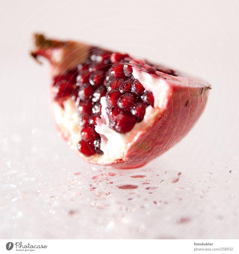 granatapfel Frucht exotisch ästhetisch außergewöhnlich saftig rot Falzflyer Farbfoto Studioaufnahme Textfreiraum unten Schwache Tiefenschärfe