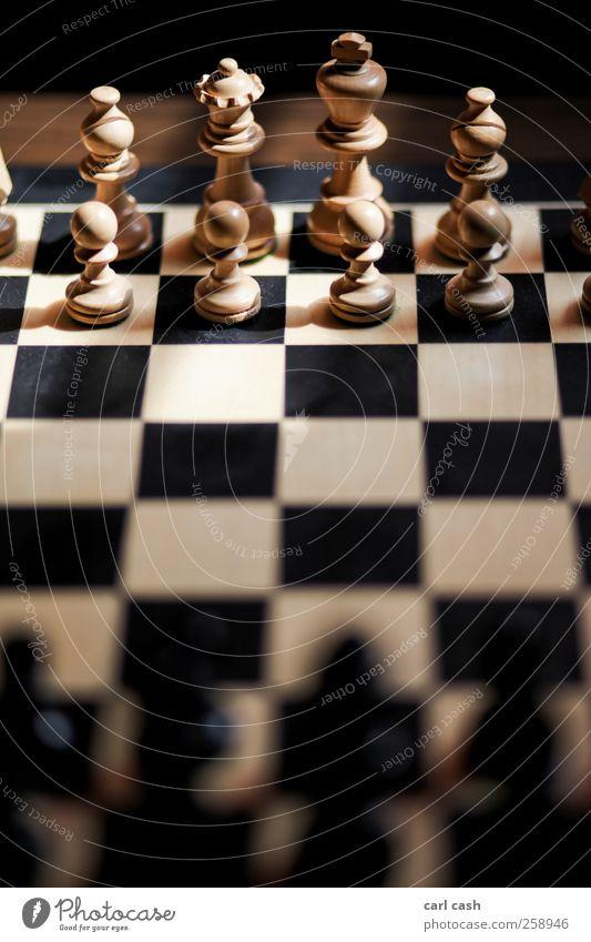 Schach elegant Design Brettspiel Holz König Spielen ästhetisch braun schwarz Ordnungsliebe planen Schachbrett Farbfoto Gedeckte Farben Innenaufnahme