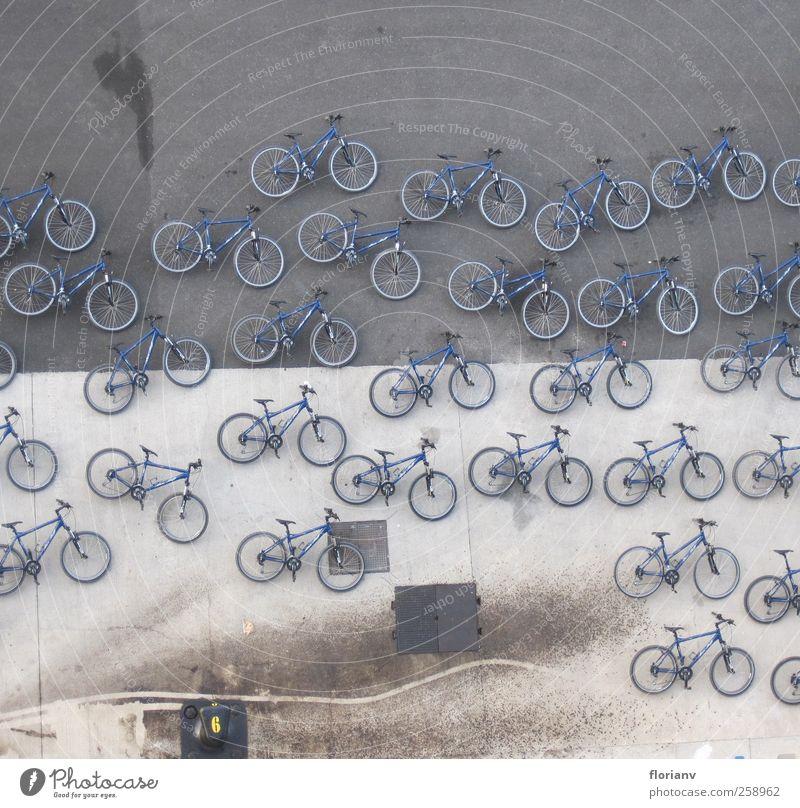 Liegeräder Fahrrad Tourismus Hafen Stadt Schifffahrt Fähre Kreuzfahrt Hafenstadt mehrfarbig Ferien & Urlaub & Reisen Wasserfahrzeug Verkehr Vogelperspektive