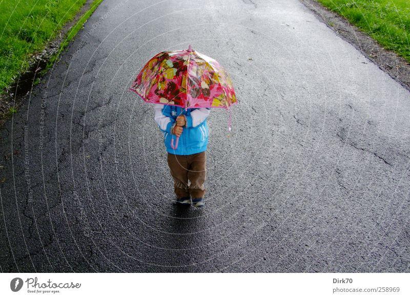 Wanderpilz im Sommerregen Mensch Kind blau grün Sommer Freude Junge grau Wege & Pfade Regen lustig Kindheit gehen rosa wandern maskulin