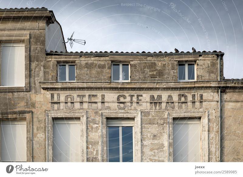 Hotel-Empfang Himmel alt blau Haus Wand Mauer braun Tierpaar Idylle historisch Zusammenhalt Taube