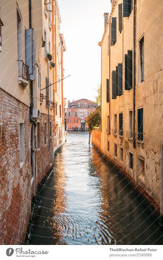 Venedig Kleinstadt Stadt Hafenstadt Sehenswürdigkeit braun gelb Kanal Gasse Wasser Meerwasser Ferien & Urlaub & Reisen Reisefotografie entdecken Italien
