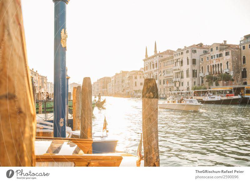 Venedig Kleinstadt Stadt Hafenstadt Sehenswürdigkeit Wahrzeichen gelb gold grün schwarz weiß Italien Licht Gegenlicht Sonnenuntergang Stimmung Canal Grande Haus