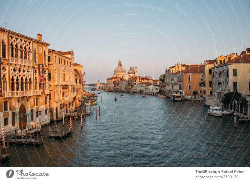 Venedig Stadt Hafenstadt Stadtzentrum blau braun gelb gold weiß Dom Italien Canal Grande Haus Stimmung Holzpfahl Steg Wasserfahrzeug Kanal Farbfoto