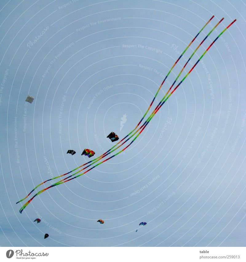 Der geteilte Himmel... Himmel blau grün rot Sommer Freude Ferne gelb Herbst Spielen Freiheit Bewegung Linie Kindheit Freizeit & Hobby fliegen