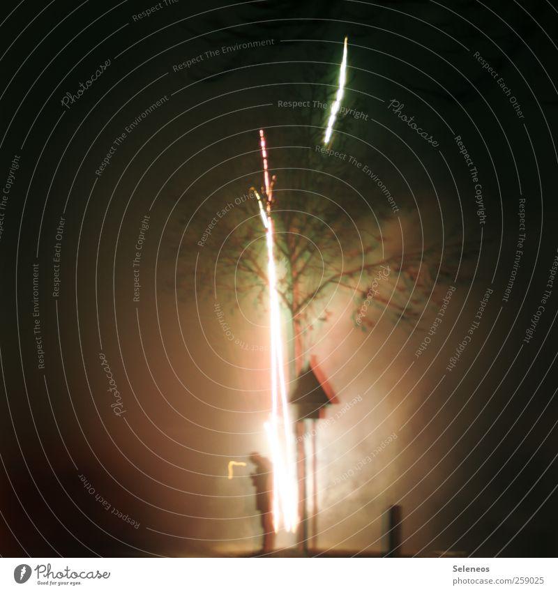 Nachzügler Mensch Baum Pflanze Winter Einsamkeit Straße dunkel Feste & Feiern Silvester u. Neujahr Rakete Verkehrsschild Nachtleben