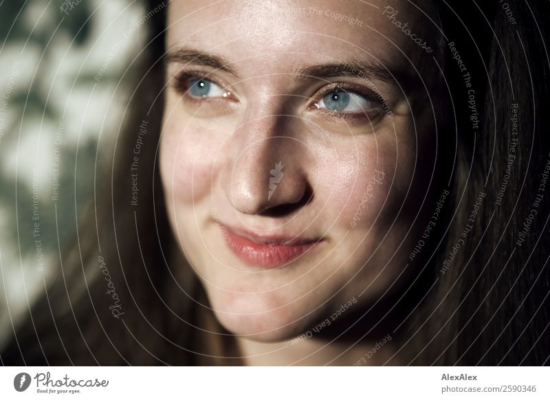 Portrait einer jungen, schmunzelnden Frau Freude schön Gesicht harmonisch Wohlgefühl Wohnung Junge Frau Jugendliche 18-30 Jahre Erwachsene brünett langhaarig