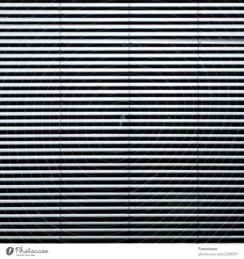 Good for your eyes (grau auf schwarz) schwarz Haus Fenster kalt Gefühle grau Büro Arbeit & Erwerbstätigkeit Design ästhetisch Häusliches Leben Coolness Schutz Kunststoff verstecken Wachsamkeit